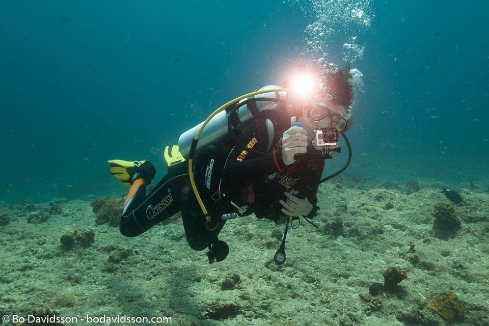 BD-150424-Maldives-8141-Homo-sapiens.-Linnaeus.-1758-[Diver].jpg